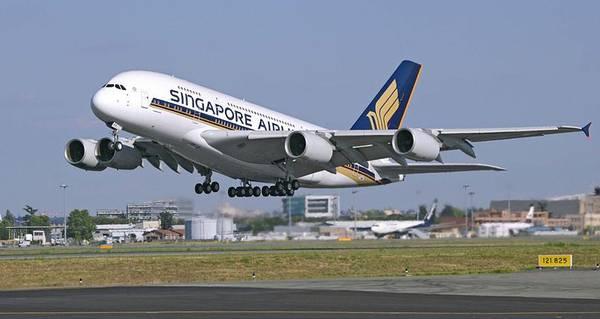 Купить авиабилеты сингапурские авиалинии купить авиабилеты в калининграде онлайн