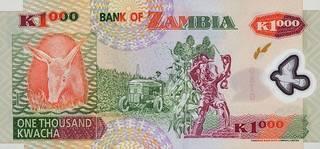 1000 замбийских квач - оборотная сторона