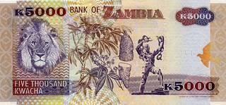 5000 замбийских квач - оборотная сторона