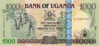 1000 угандийских шиллингов