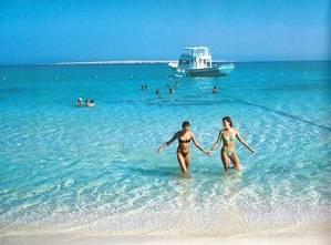 Выводы экспертов основаны на тщательном изучении экологической ситуации на тысячах пляжей.