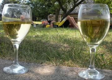 Туристов в Тоскане отправят в винно-велосипедный тур