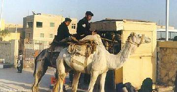 РАН порекомендовал отдыхать на Синае внимательно