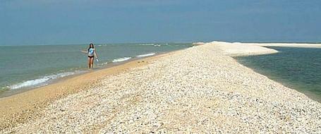 приморско ахтарск фото пляжа