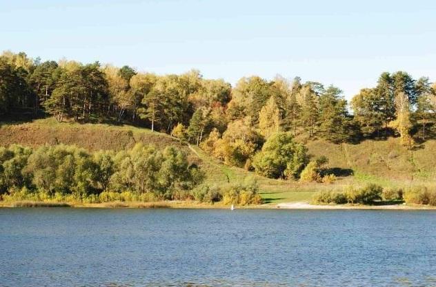 Картинки по запросу природа г.о озеры фото