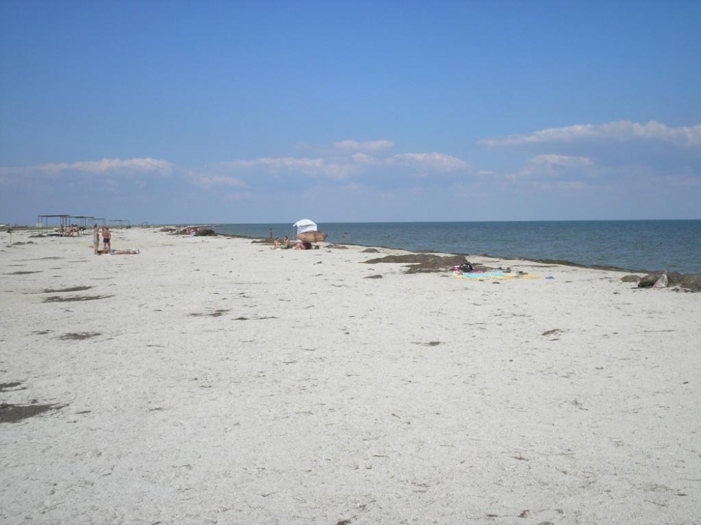 фото пляжа портового просто