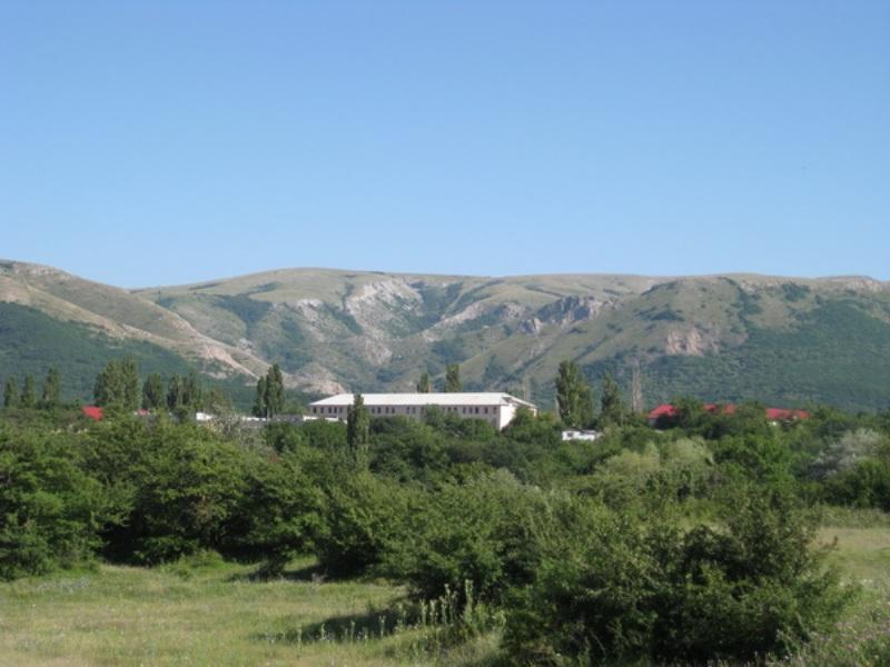 гарнизон в перевальном фото поражениям подвержены деревья
