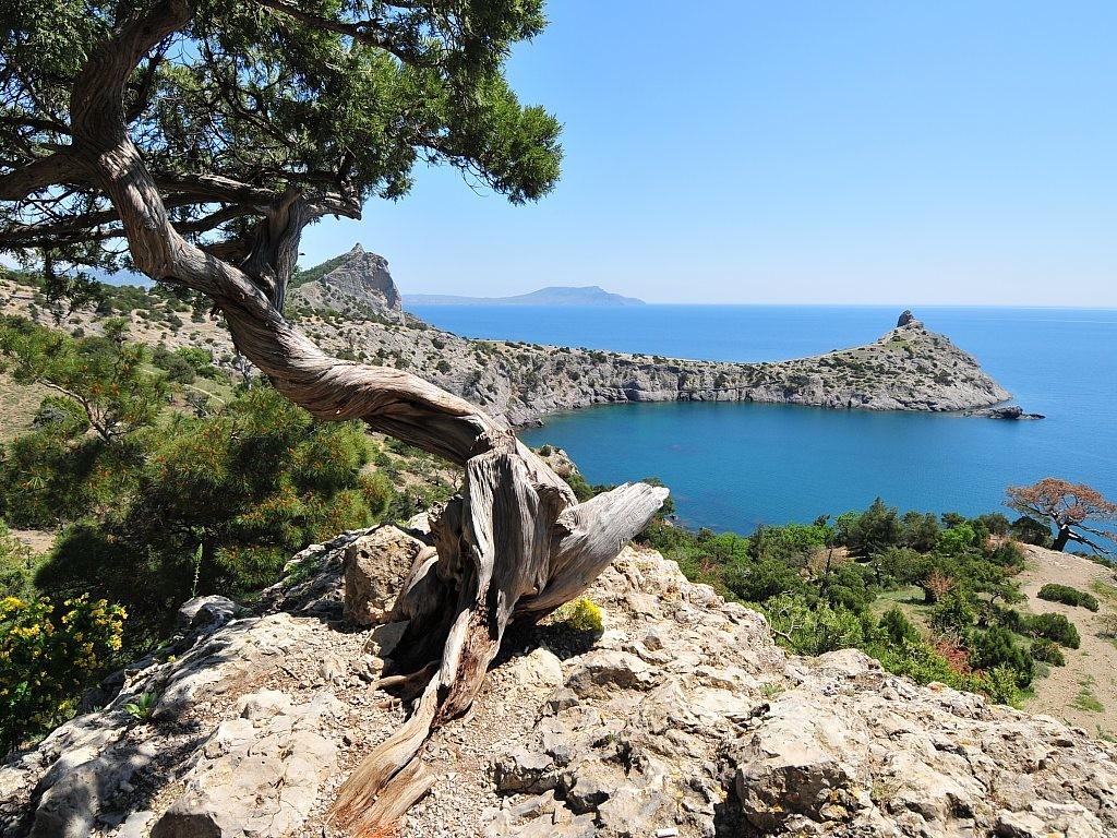Туристический поток вКрым увеличился на22%