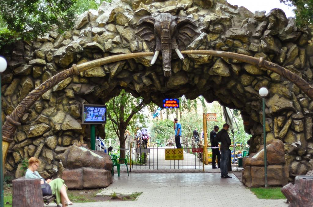 сафари парк краснодар фото фотографы