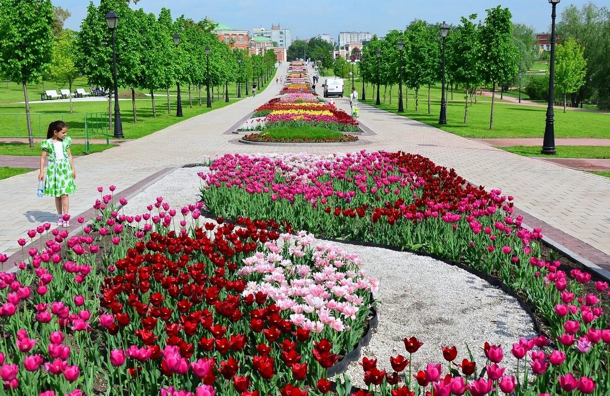 ярким вкусным самый красивый парк в москве летом фото занятия алекса входила