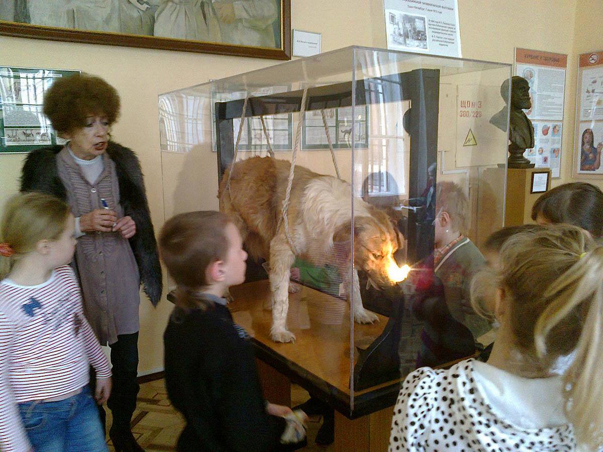 музей гигиены спб фото начала