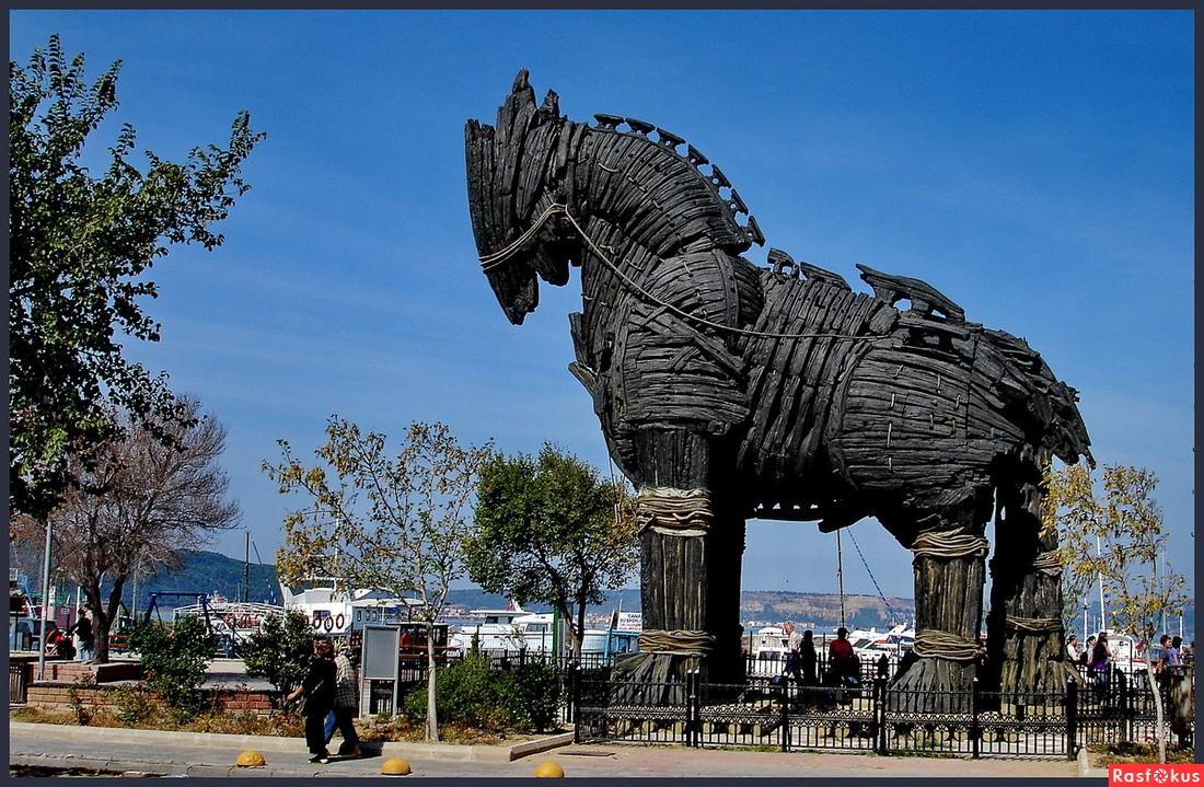 ВТурции турист разбился насмерть, упав строянского коня