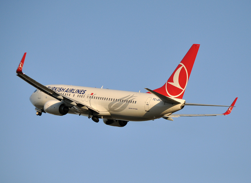 ВСтамбуле совершил экстренную посадку самолет, летевший в российскую столицу изАнтальи