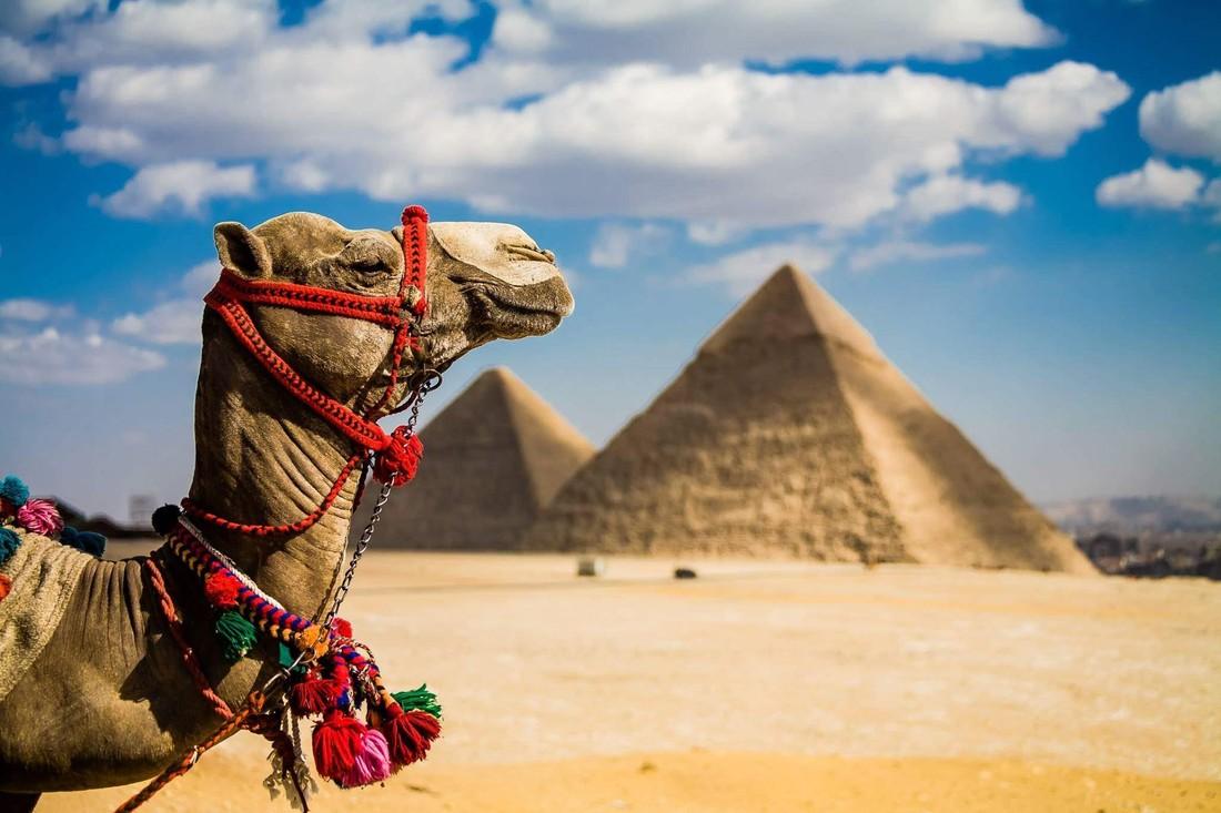 В Египет из Воронежа !!!