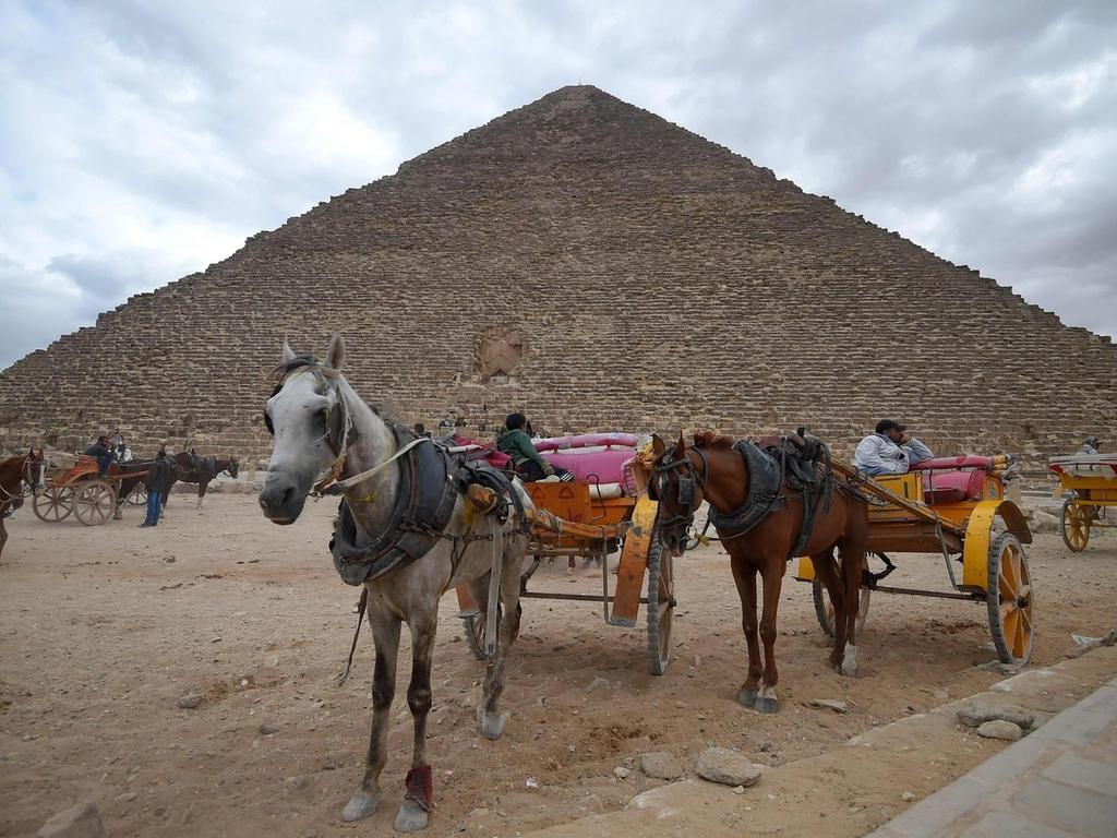 новости в египте картинки очень долго