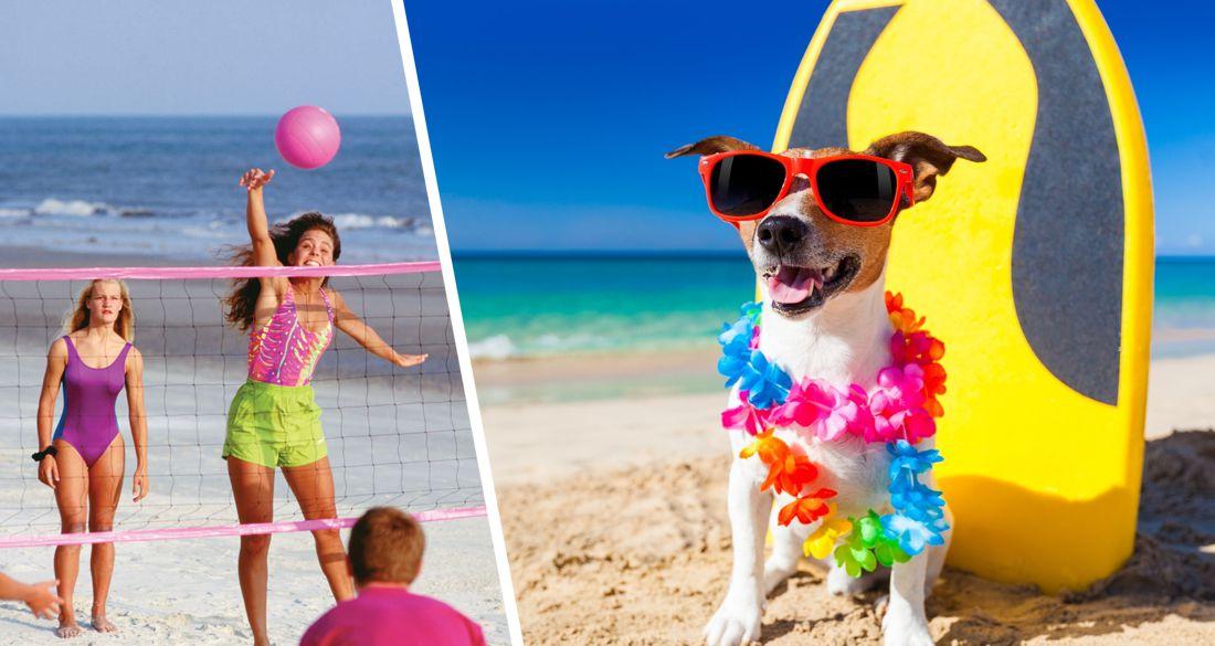 С животными не приходить, буйки не трогать, играть где укажут: россияне получили новые правила нахождения на пляжах