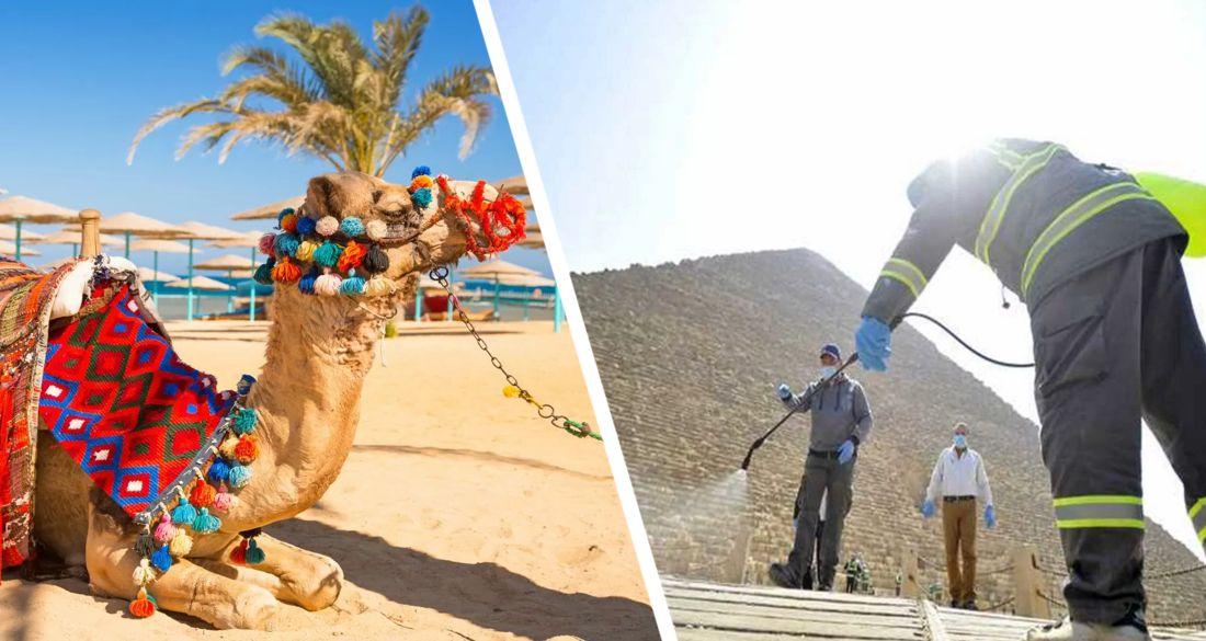 Коронавирус отступает: в Египте радуются и ждут туристов
