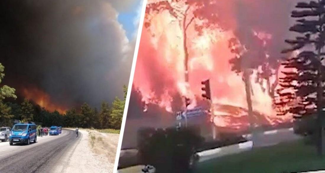 Эвакуация туристов началась: пожары в Турции дошли до отелей |  Туристические новости от Турпрома